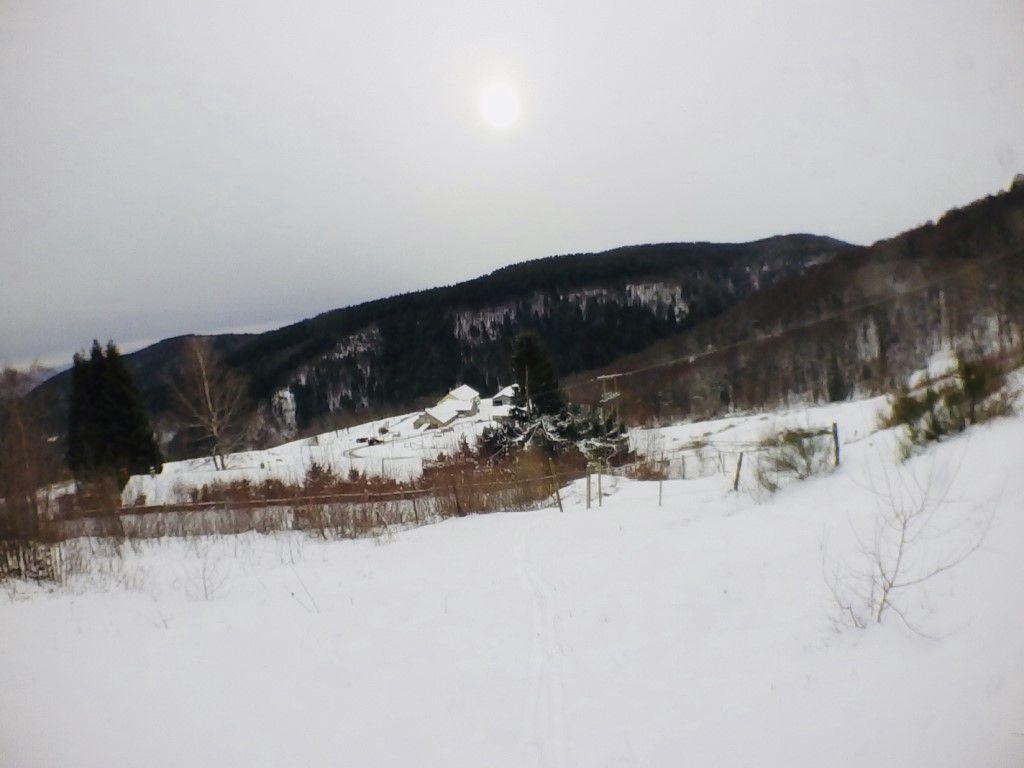 2020: De la neige dans le jardin