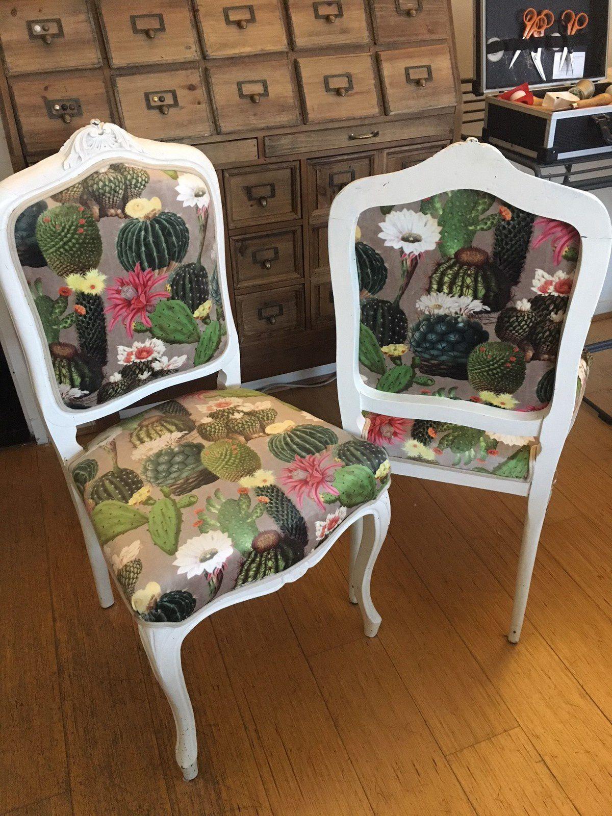 Des cactus en velours