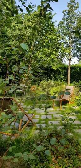 in situe dans le beau jardin de mes clients (merci pour les photos)