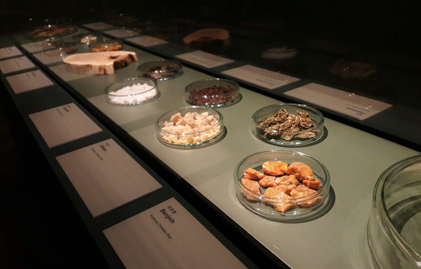Avis exposition : Parfums de Chine - La culture de l'encens au temps des empereurs - Musée Cernuschi Paris - Le blog d'Akialam