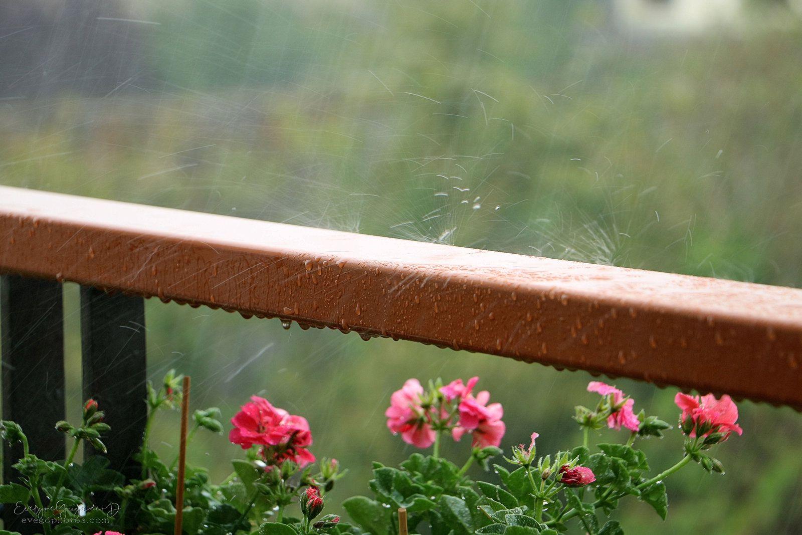 La Pluie fait des Claquettes...
