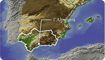 Les figuettes sauvages d'Andalousie