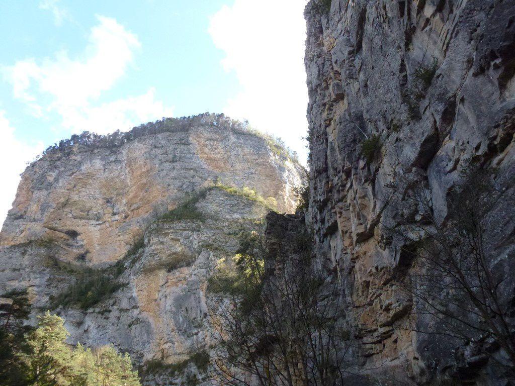 Les falaises des Gorges des Gâts (vue de la route)