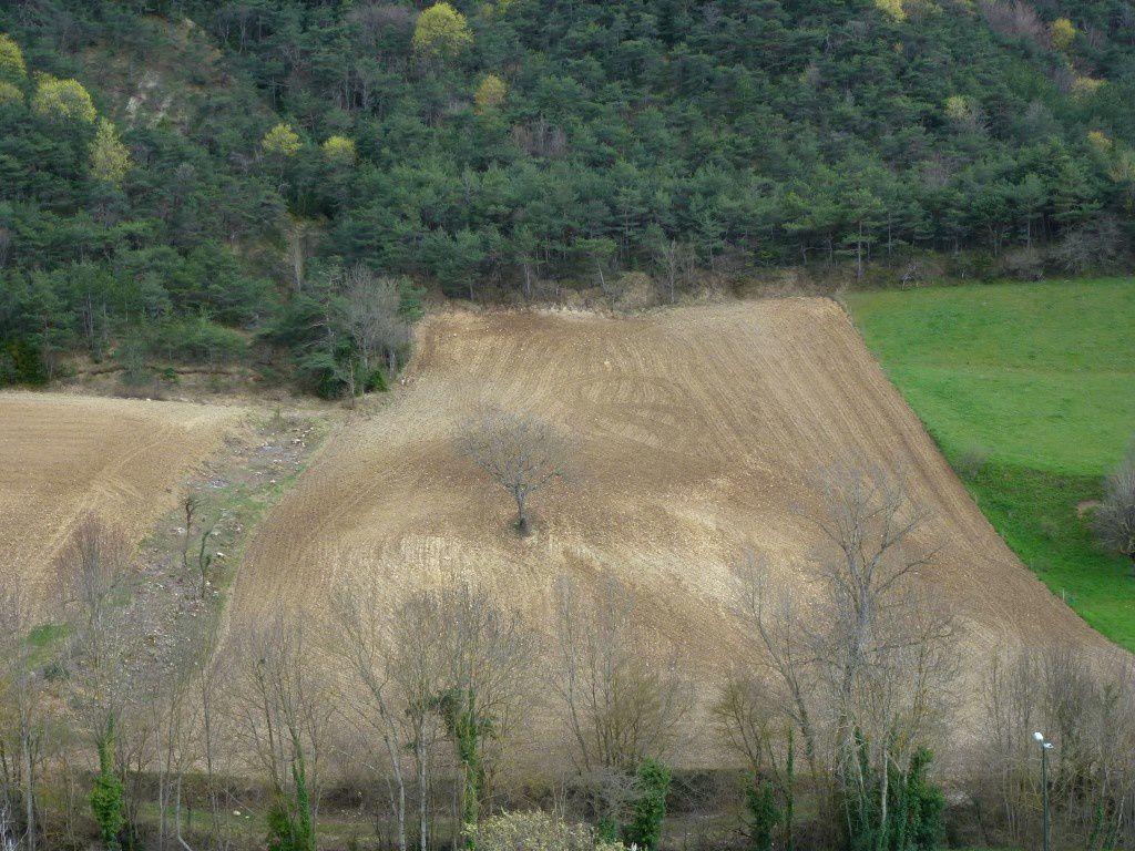 Les paysages aux alentours du village.