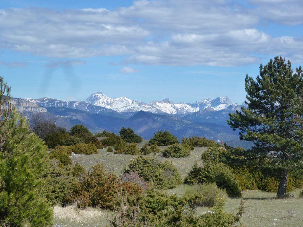 La vue sur les montagnes enneigées