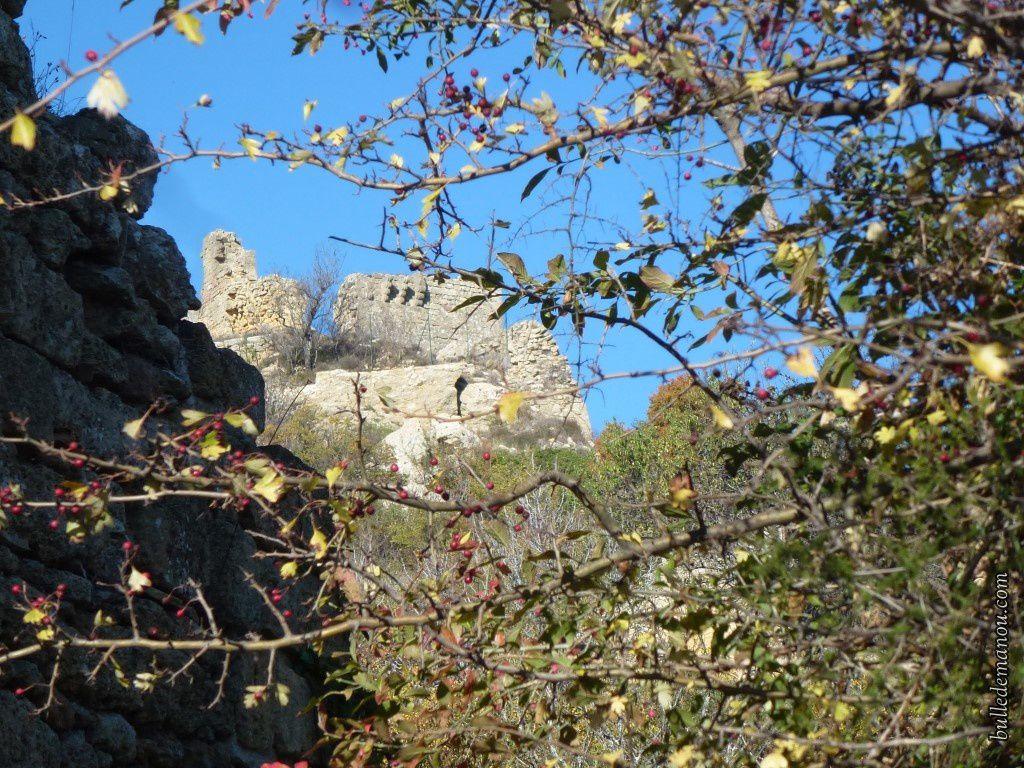 Le château vu de l'église Saint-Jacques