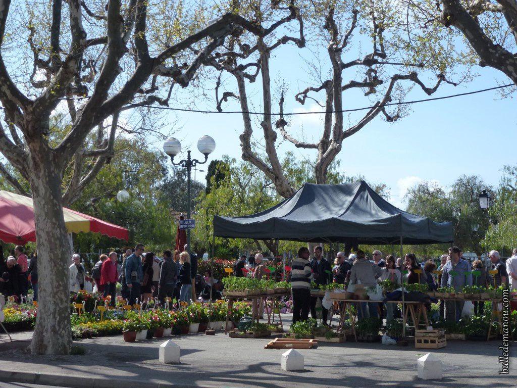 Le marché aux fleurs juste à côté du parking
