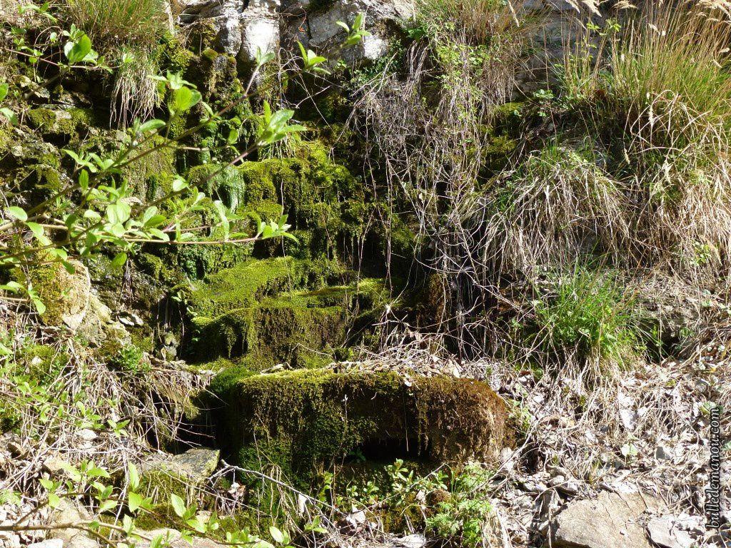 L'eau et la mousse envahissent les versants