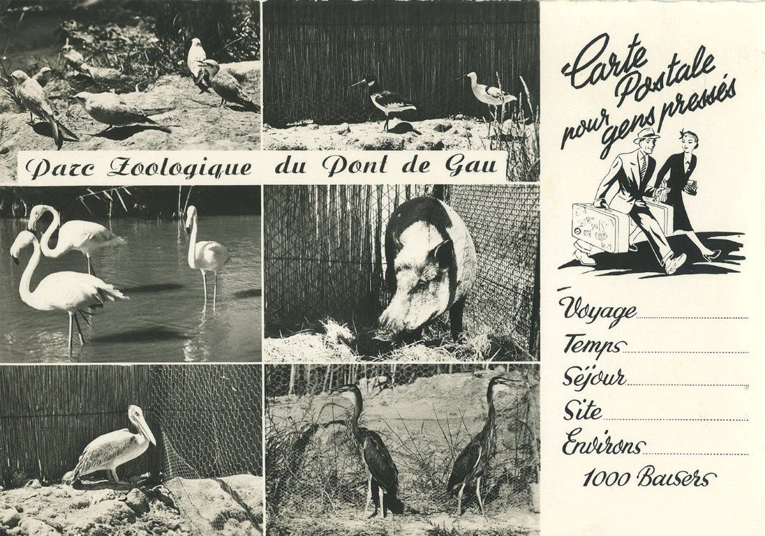 Carte postale ancienne (photo du net)