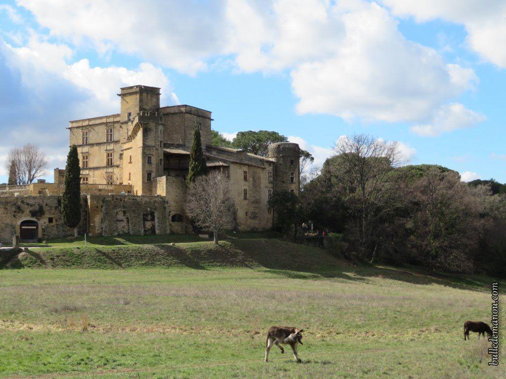 Vue du château de Lourmarin