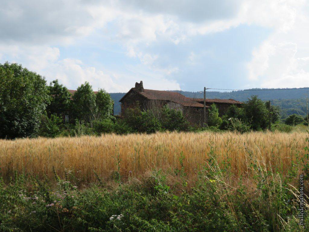 Le domaine de Chantoin au milieu des champs