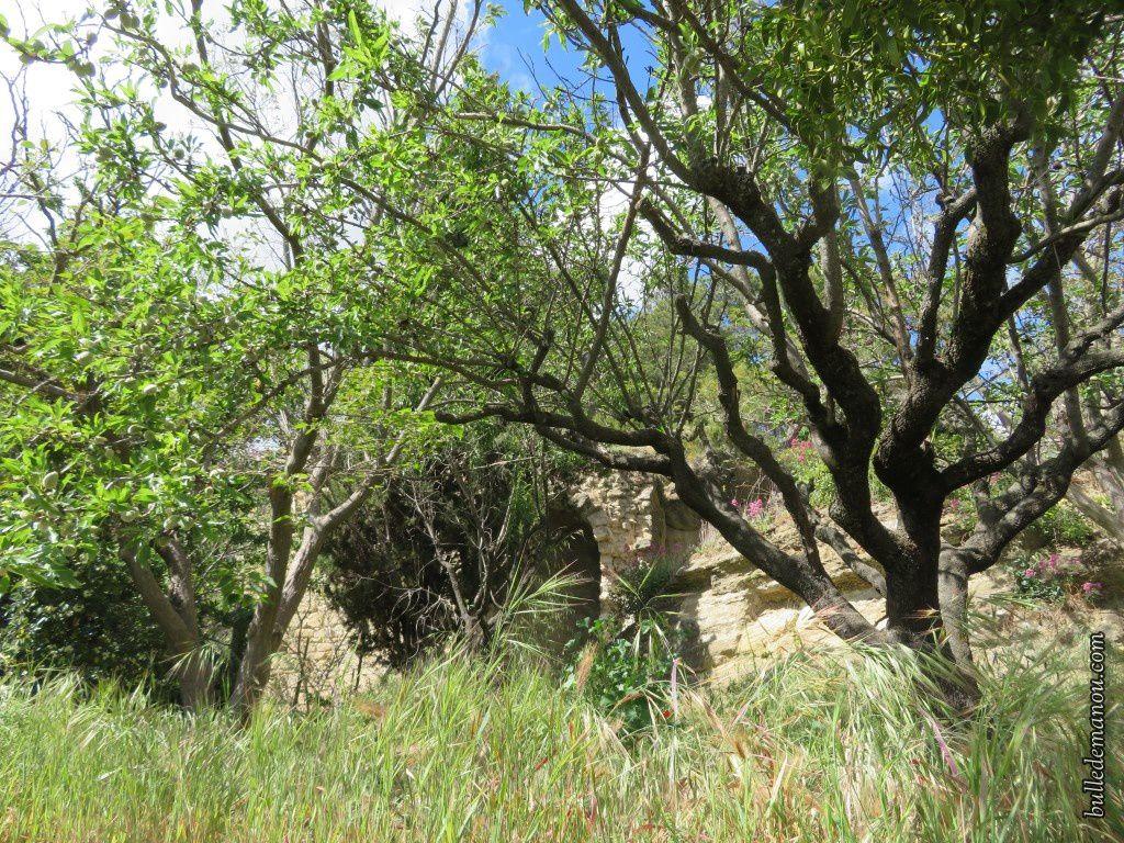 Les traces d'habitations troglodytes