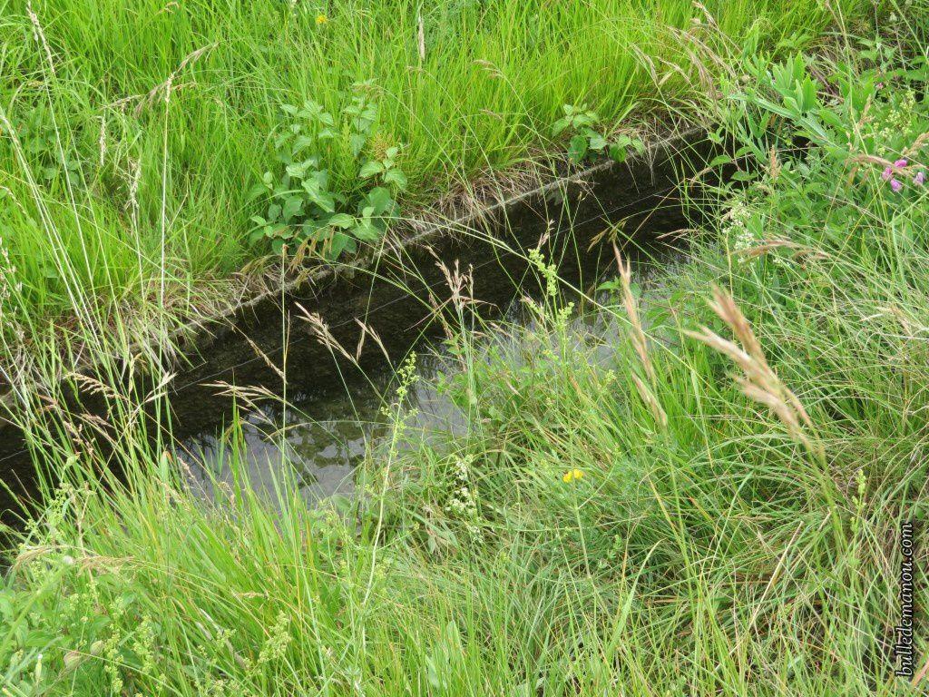 Le canal du Plan