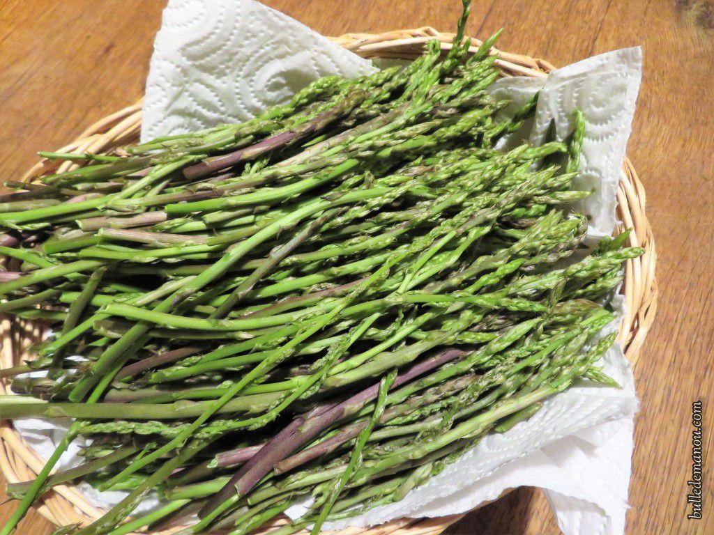 Deux de nos récoltes d'asperges sauvages