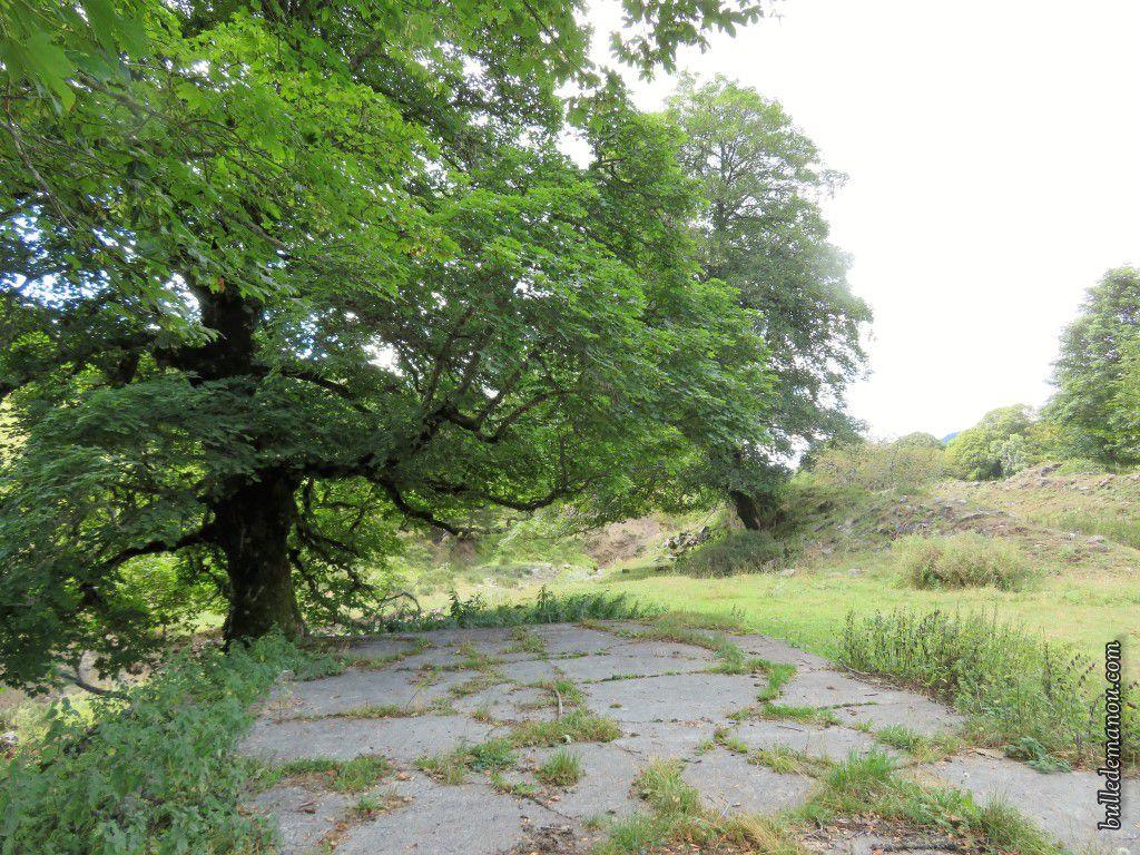 Le parc entourant la Chartreuse