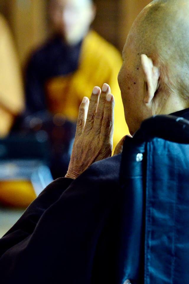 Thay, notre maître, était présent pour toute la durée de la transmission des préceptes en Thailande. Un moment de légende pour tous les jeunes aspirants là-bas qui ne l'avaient jamais rencontré jusqu'alors.