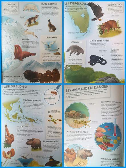 L'atlas des animaux. (Concours de noël 2017)