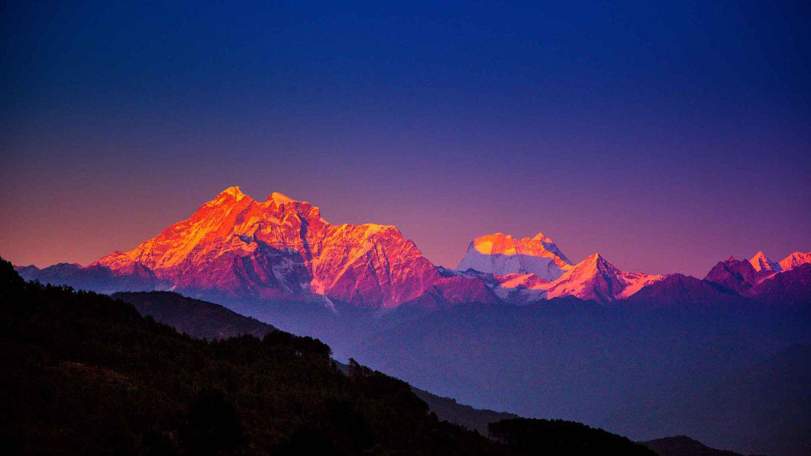 Pandu vit dans les Himalays