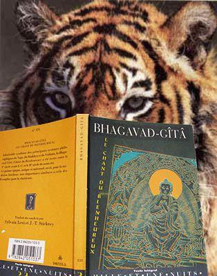 Frédéric Lenoir, Lettre ouverte aux animaux... Un tigre en train de lire la Bhagavad-gita