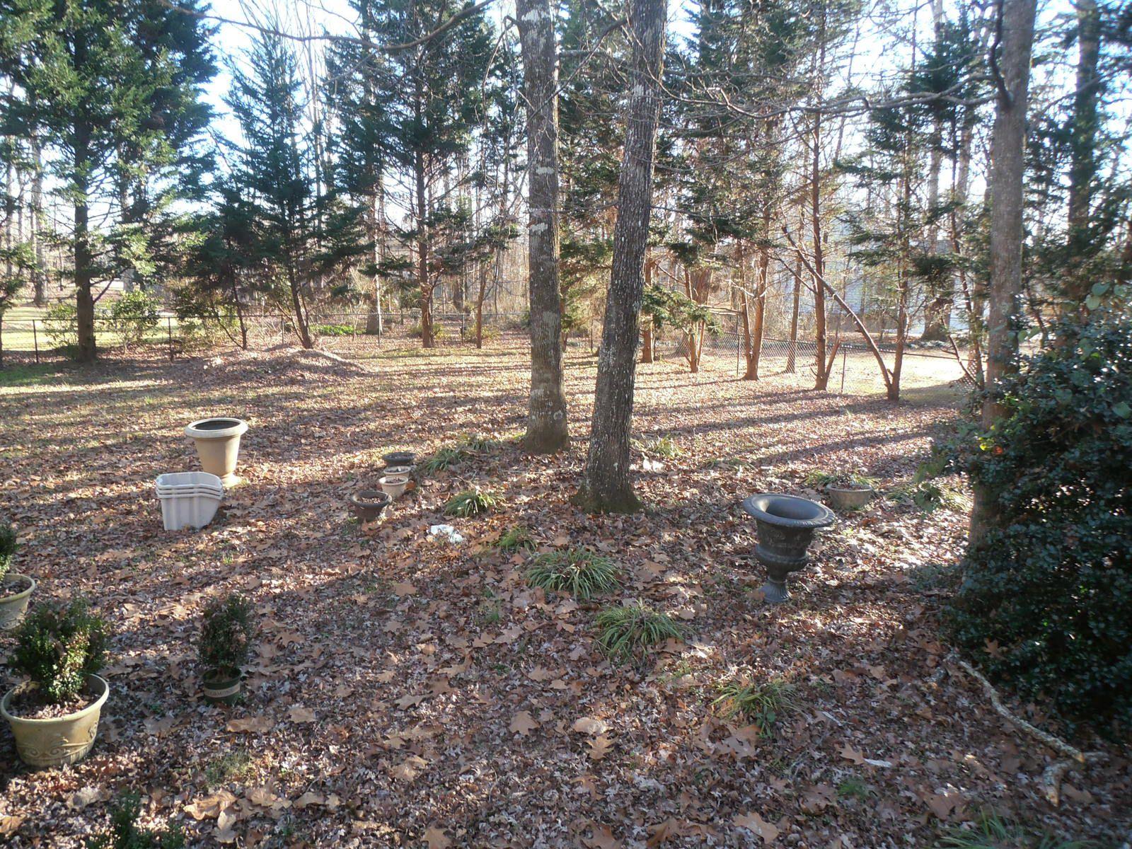 En tout bien, tout honneur : le jardin de notre maison. Contrairement à Carrollton, il est entouré d'une clôture, legs du propriétaire précèdent qui avait un chien.