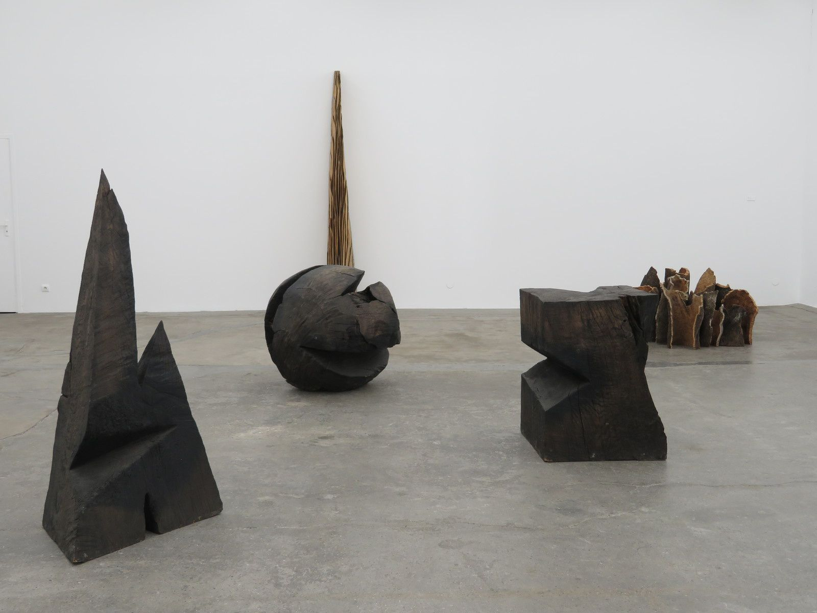 Nature to nature, une exposition de David Nash : une attention à l'arbre