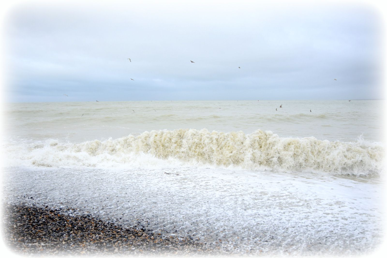 Grande marée à la Pointe du Hourdel 11 Mars 2020