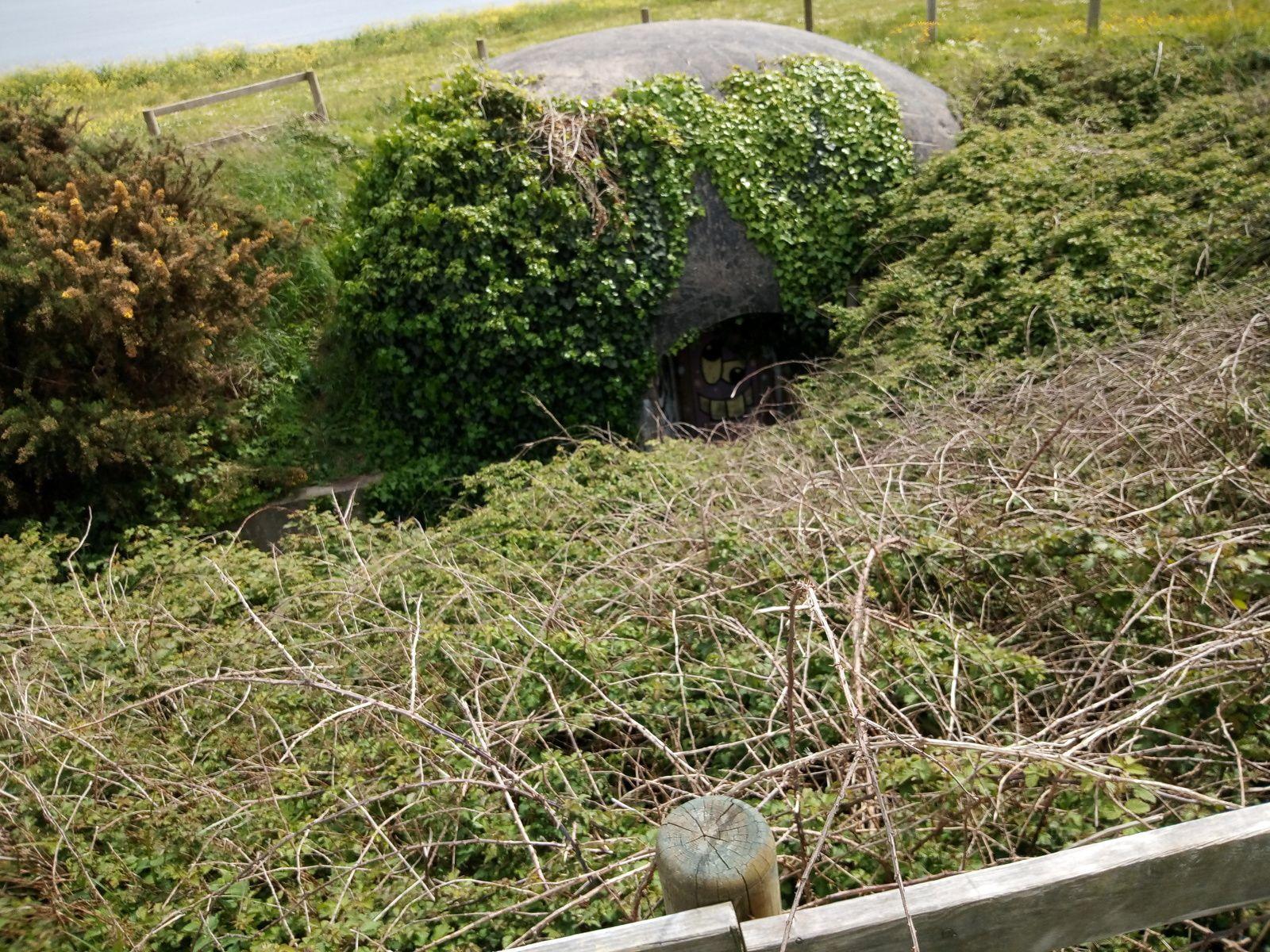 Plougonvelin..(Bretagne...Finistère)...le fort de Bertheaume et ses bunkers.