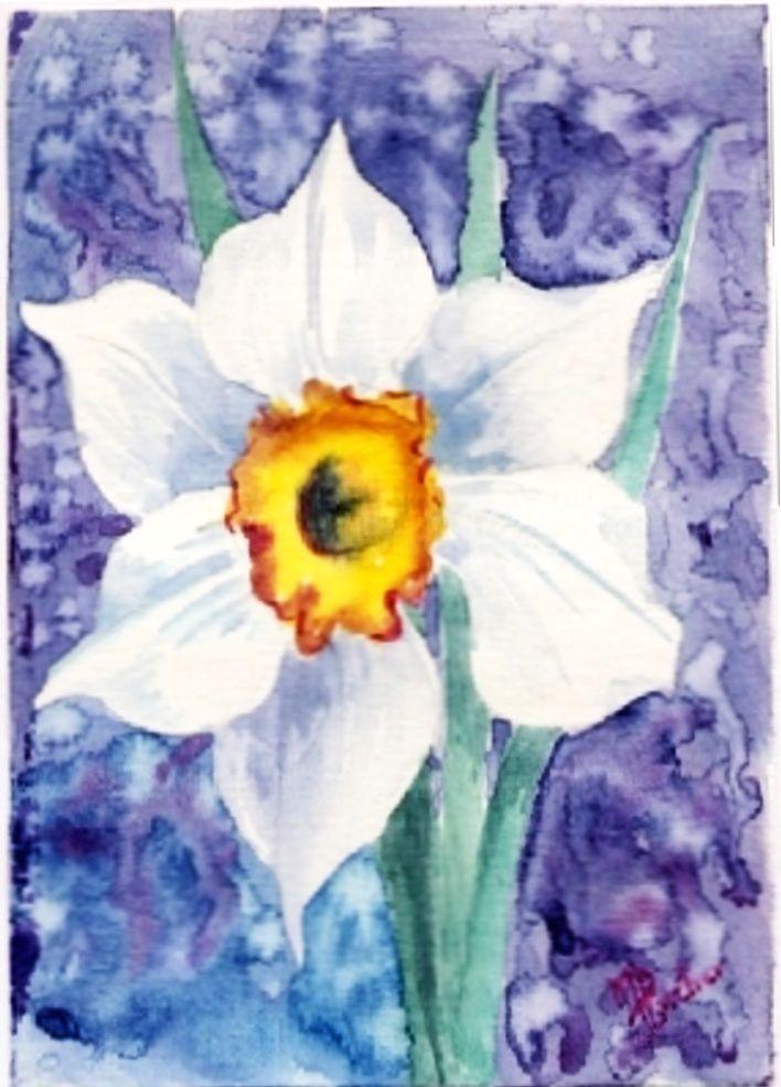 narcisse 06-04-05-078