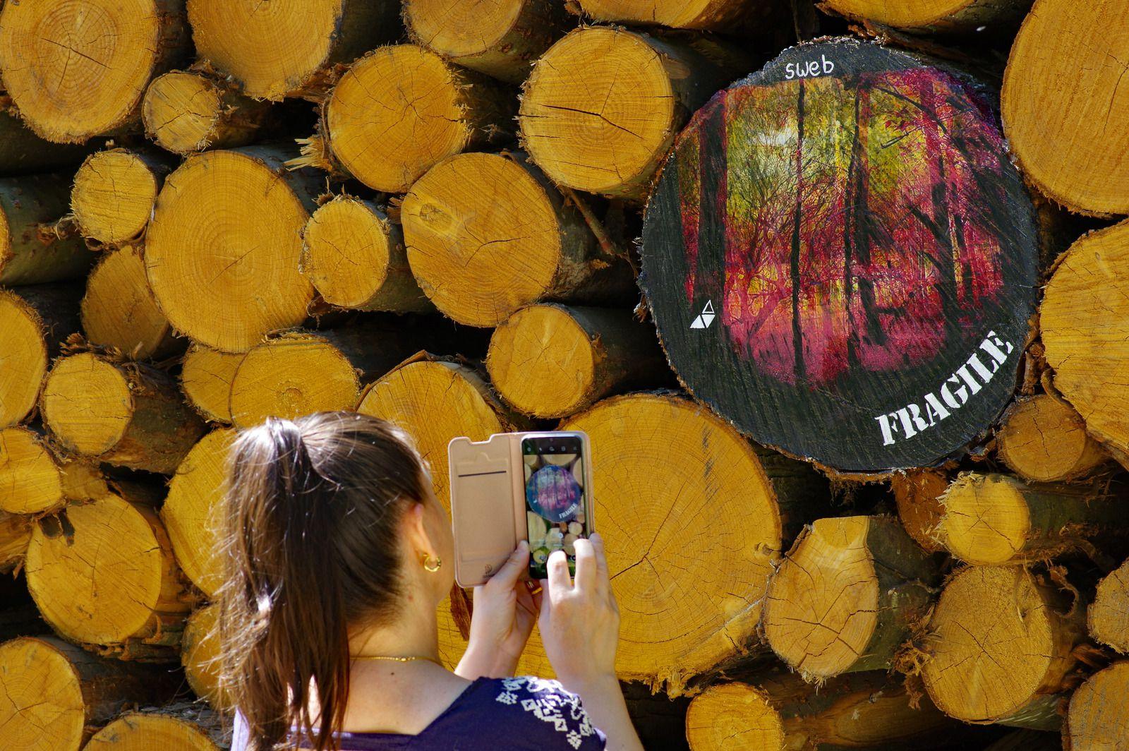 Artiste en forêt