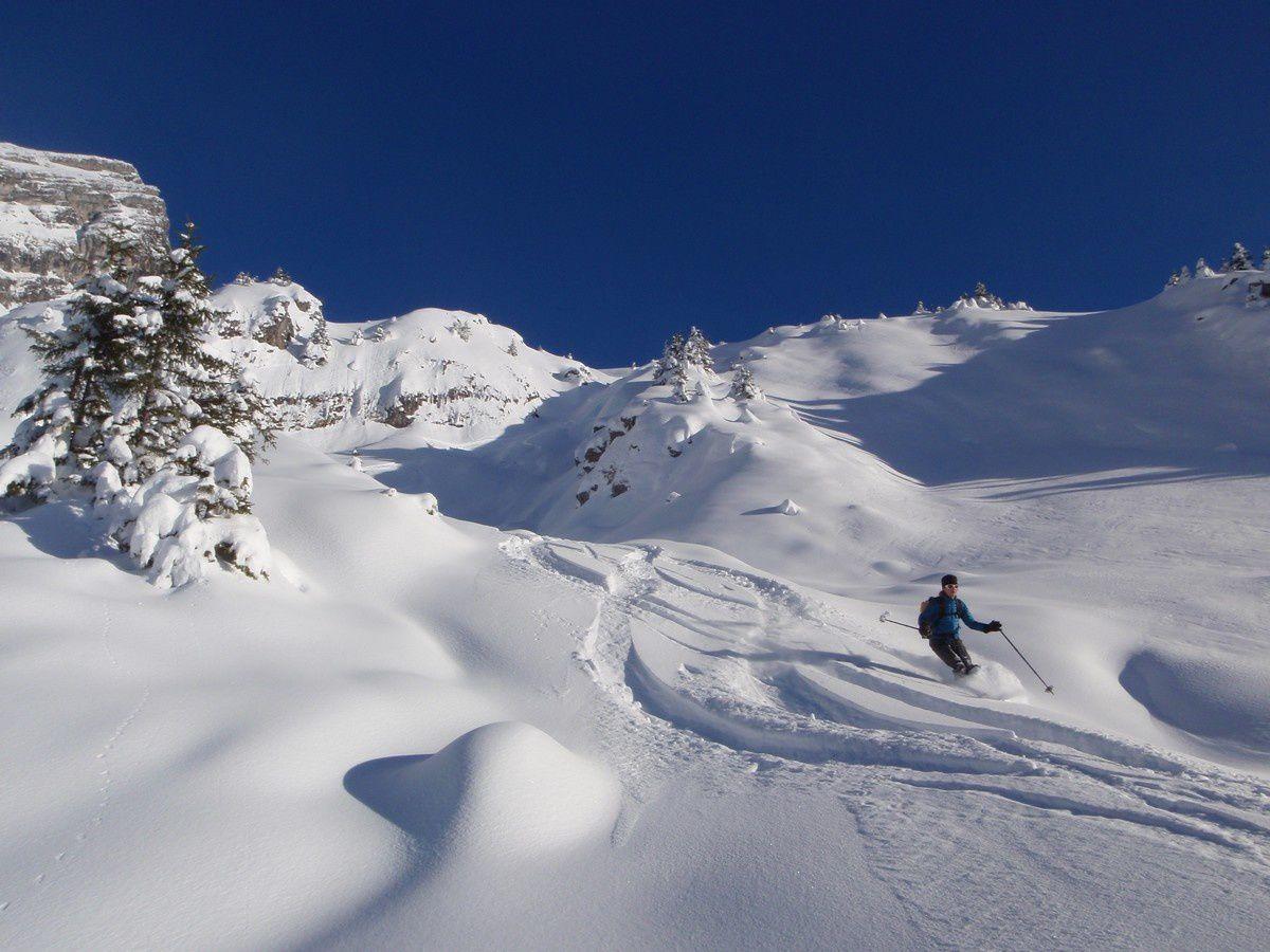 Mumu surf sur la meringue jusqu'en bas des combes! Vivement que la neige arrive aussi dans l'extrème sud!