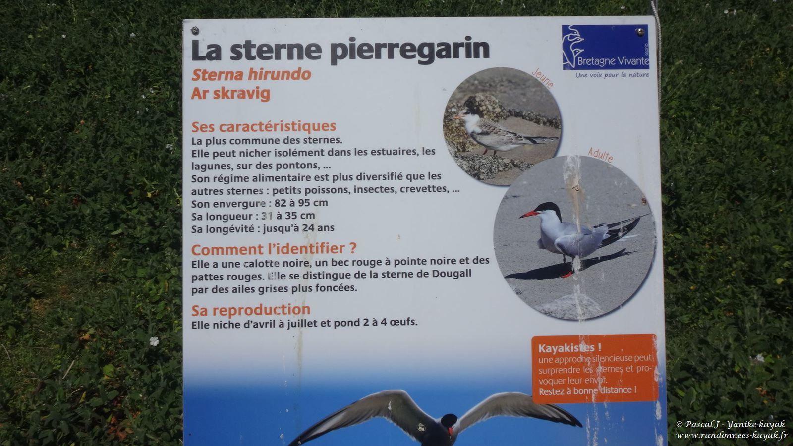Mousterlin - Archipel des Glénan