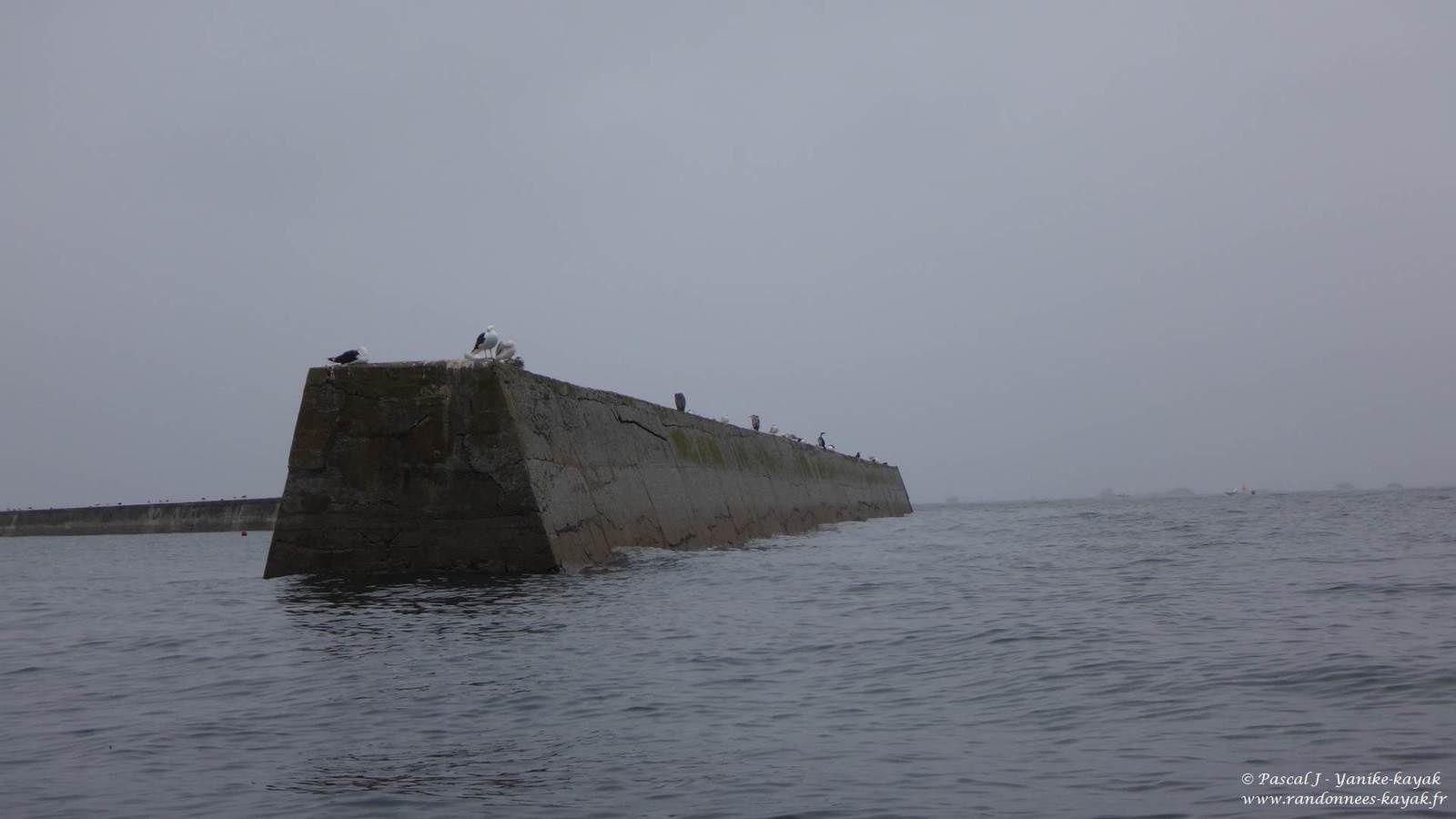 Tour de Bretagne en kayak de mer : de Plouhinec à Penmarc'h