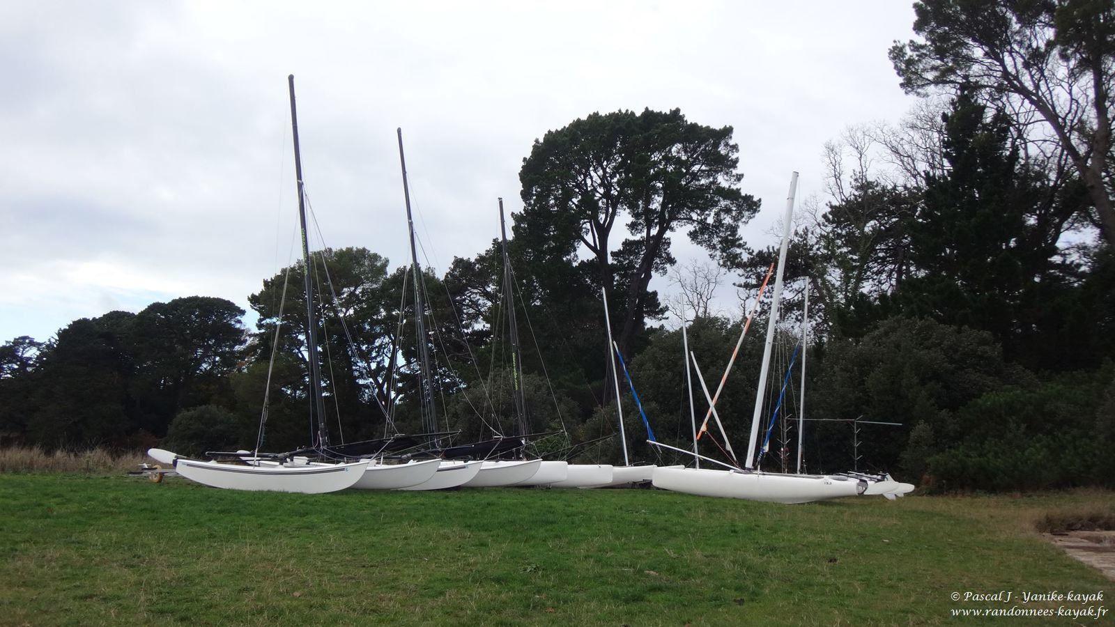 Courants du Golfe du Morbihan - Week-end CK/Mer