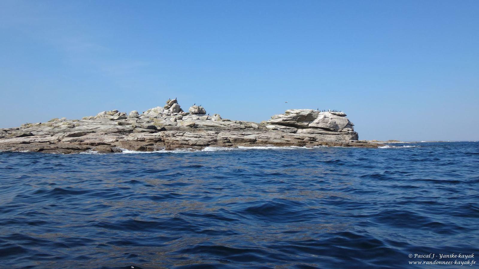 Les Glénan ... ou l'exotisme des îles lointaines ! (chapitre 1)