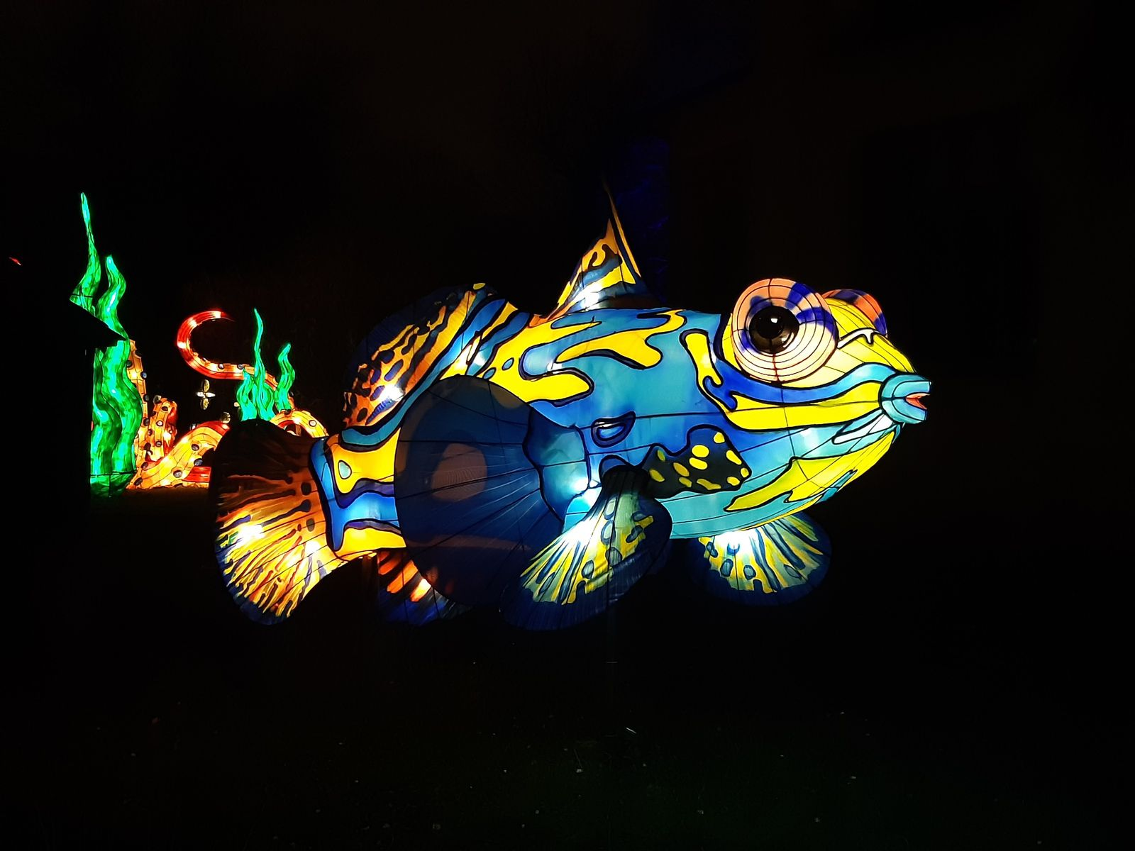 En voie d'illumination saison 2 : Océan jusqu'au 19 janvier 2020