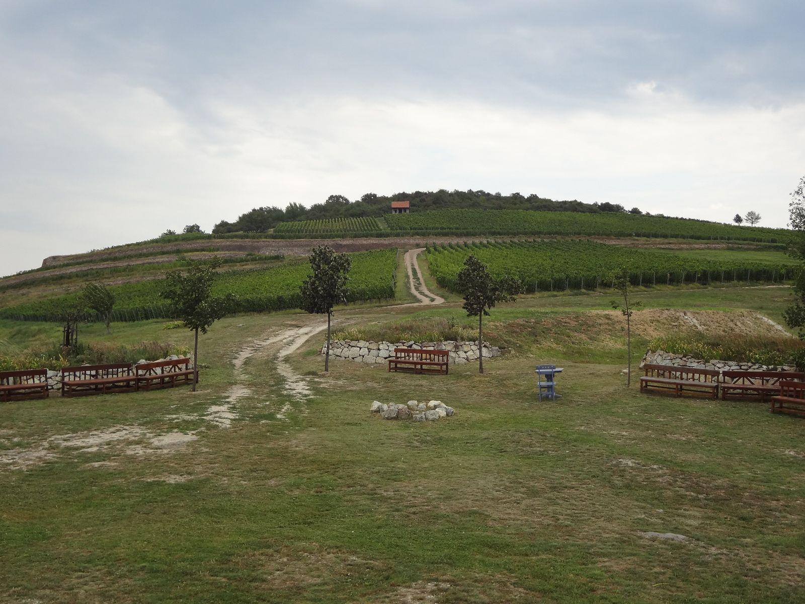Hongrie - Visite et dégustation chez Disznoko . 2019
