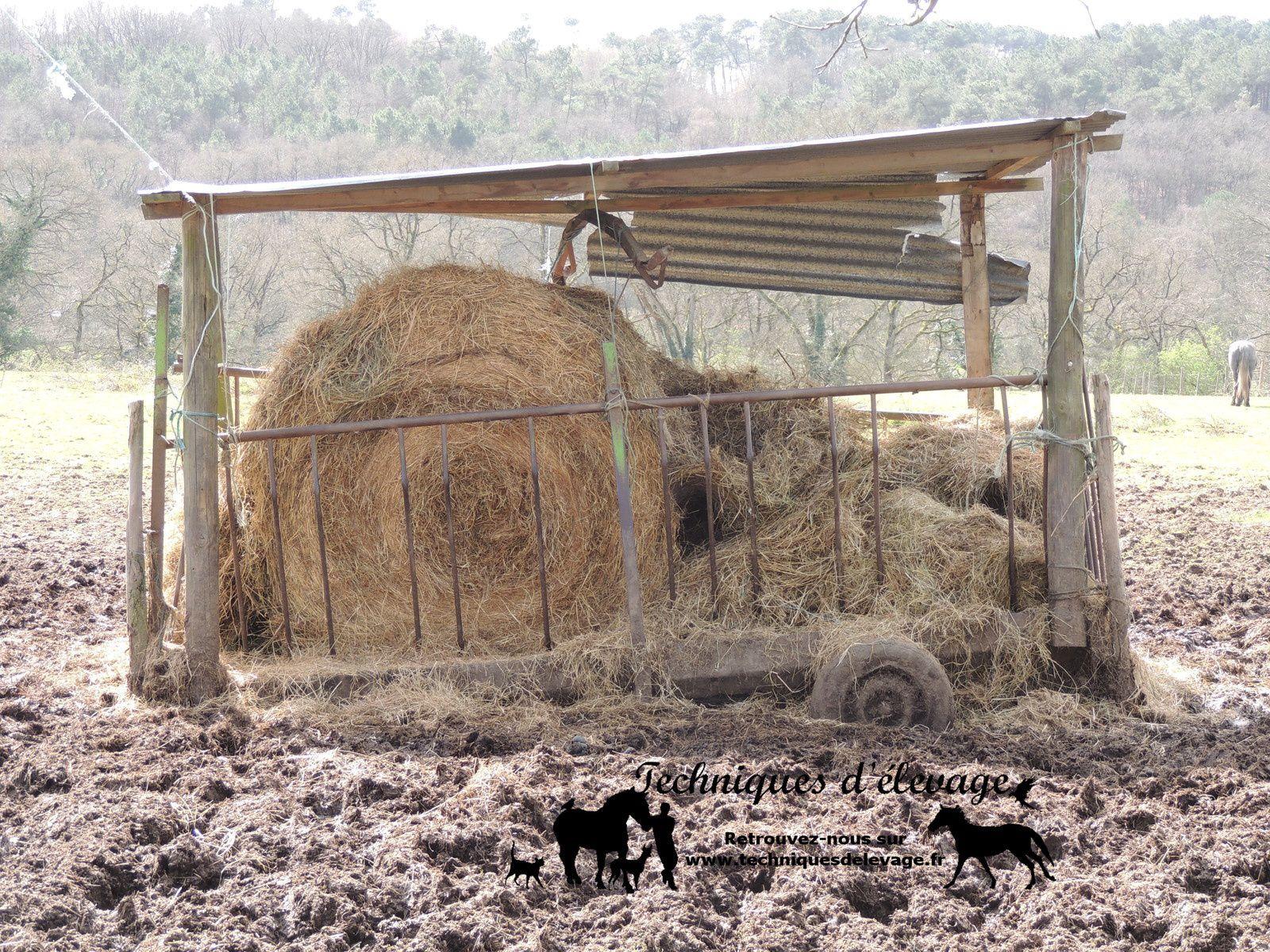 Foin en libre service. Techniques d'élevage. Tous droits réservés
