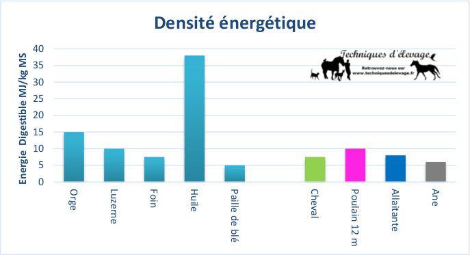 Besoins et densité énergétique de la ration. Techniques d'élevage. Tous droits réservés