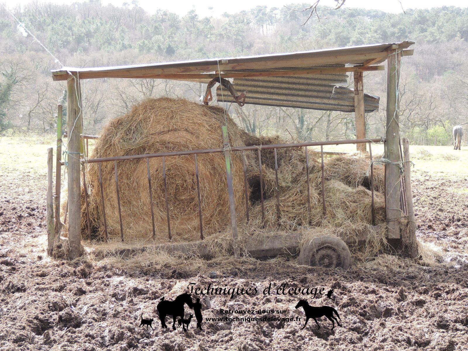 Foin. Techniques d'élevage. Tous droits réservés