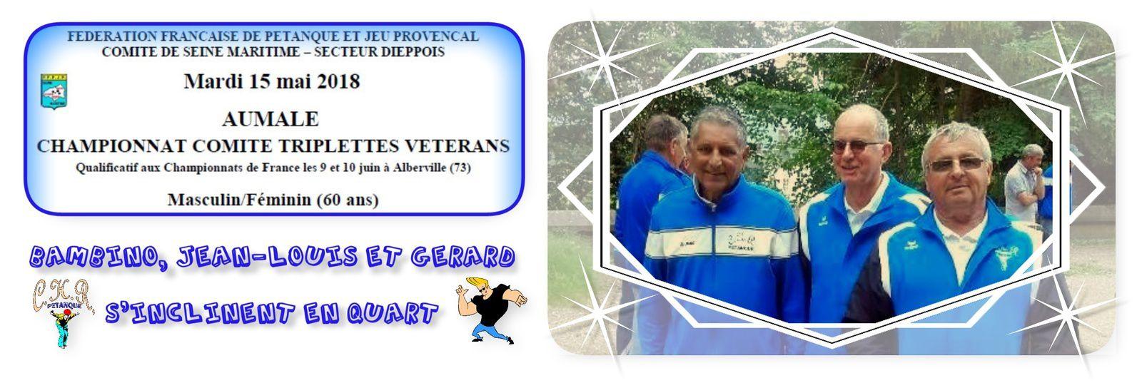 Championnat Comité Triplettes Vétérans à Aumale
