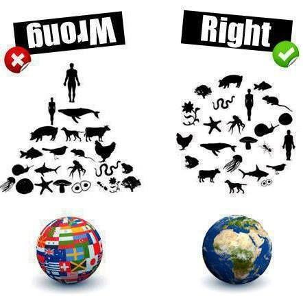 Gilets jaunes : Les vraies revendications pour un monde meilleur