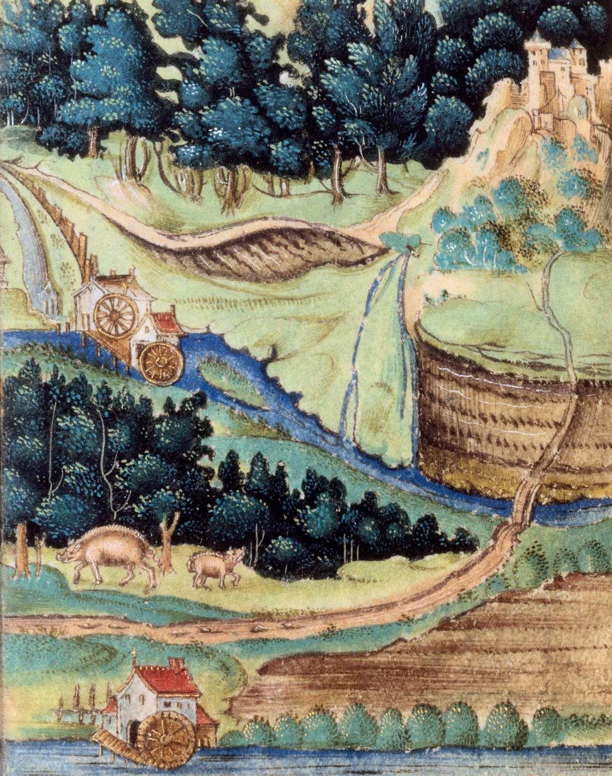 Paysage médiéval. Bibliothèque nationale de France, Ms Latin 10981