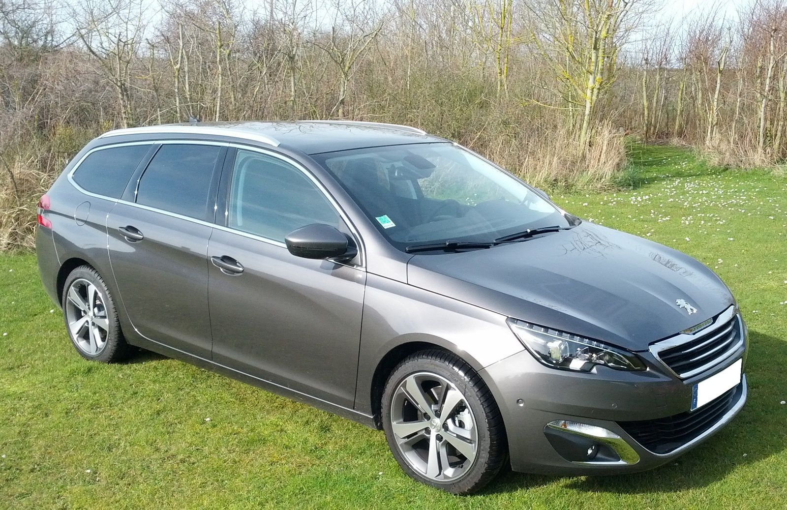 peugeot 308 sw feline 150 cv blue hdi eat6 options. Black Bedroom Furniture Sets. Home Design Ideas
