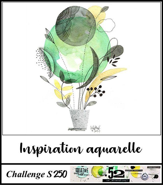 Challenge#250_52, Rue Scrapcopines