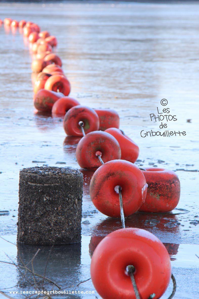 52 Semaines en photo en 2019_Les Bottes Rouges_Thème#02_Alignement