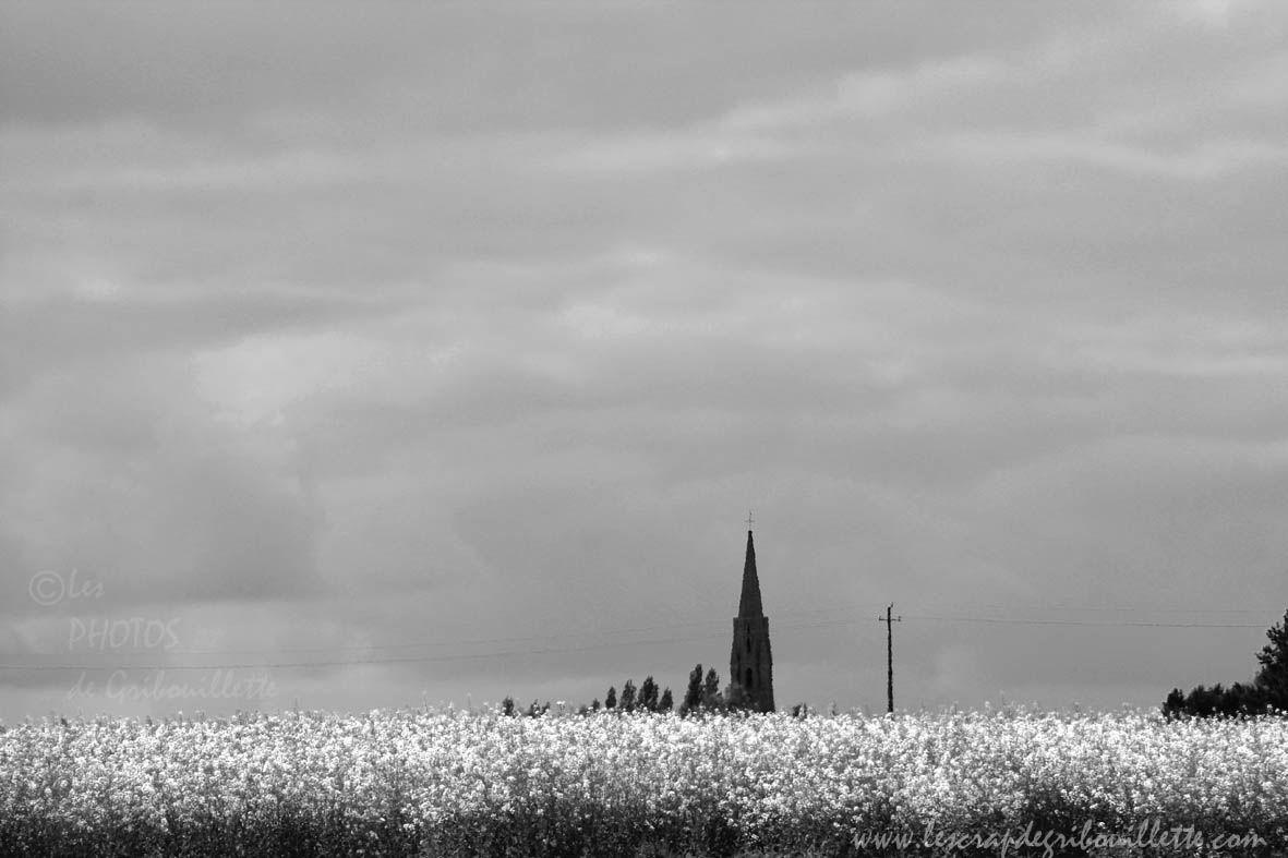 52 Semaines en photo en 2020_Les Bottes Rouges_Thème#15_Paysage rural (noir & blanc)