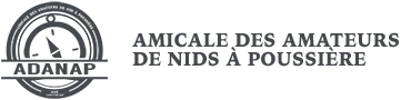 La Boîte à Surprises, Histoire en l'Air par Paul Gilson - Illustré en couleurs par Jean Image - La Nouvelle France, collection Fier Lapin n°2, 4e Trim. 1946