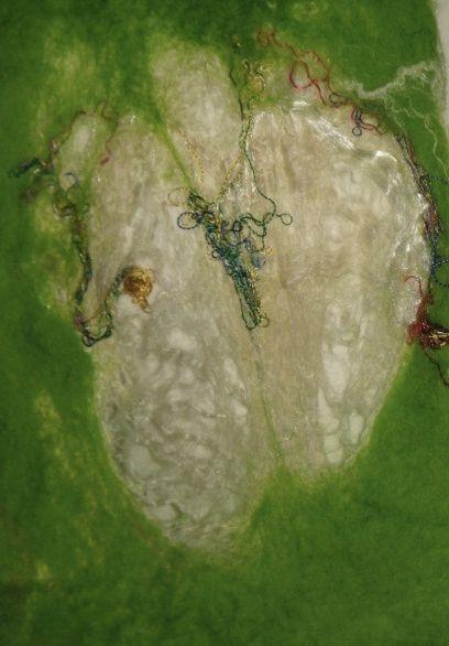 cocon de soie déroulé dans des fibres de mérinos