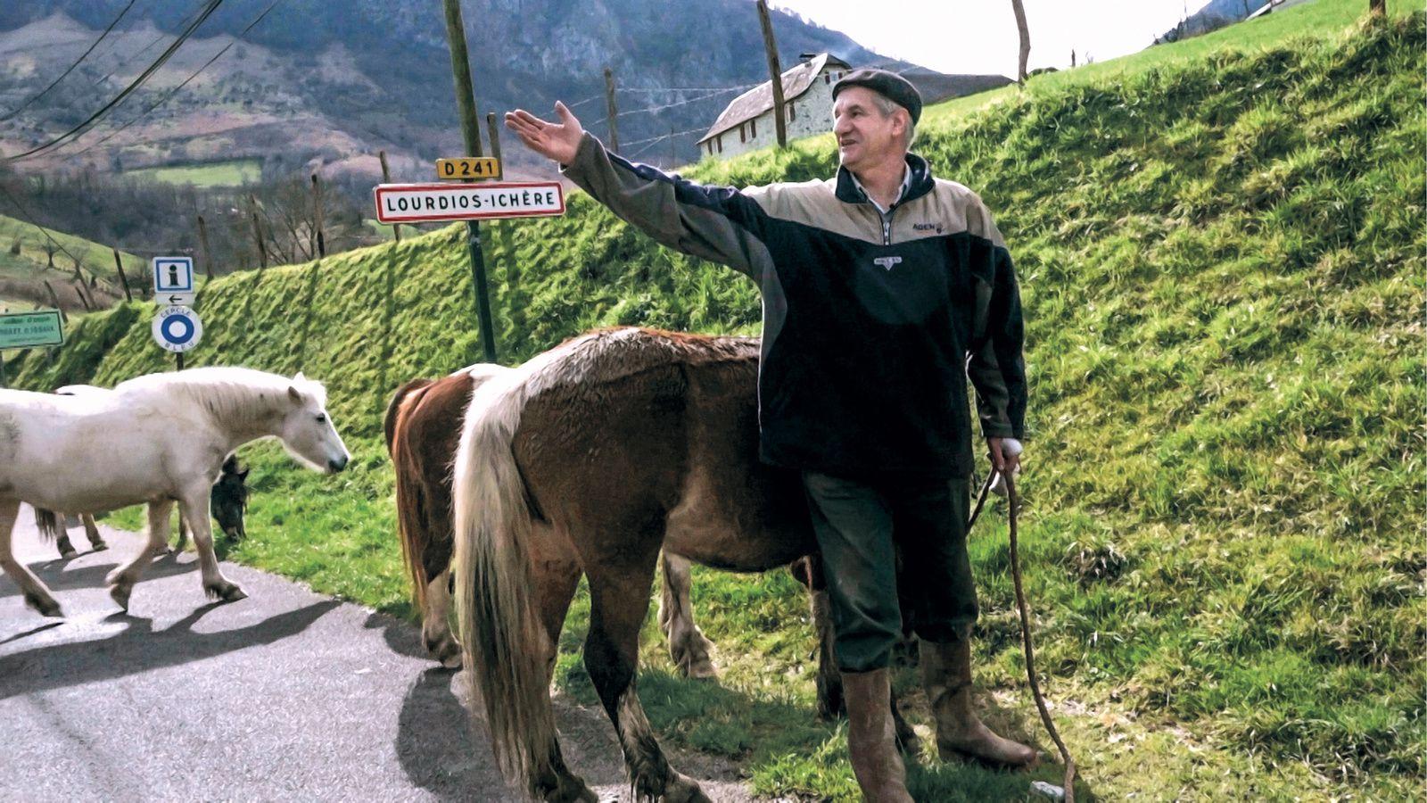 Un berger et deux perchés à l'Elysée ? (BANDE-ANNONCE) de Philippe Lespinasse et Pierre Carles - Le 23 janvier 2019 au cinéma