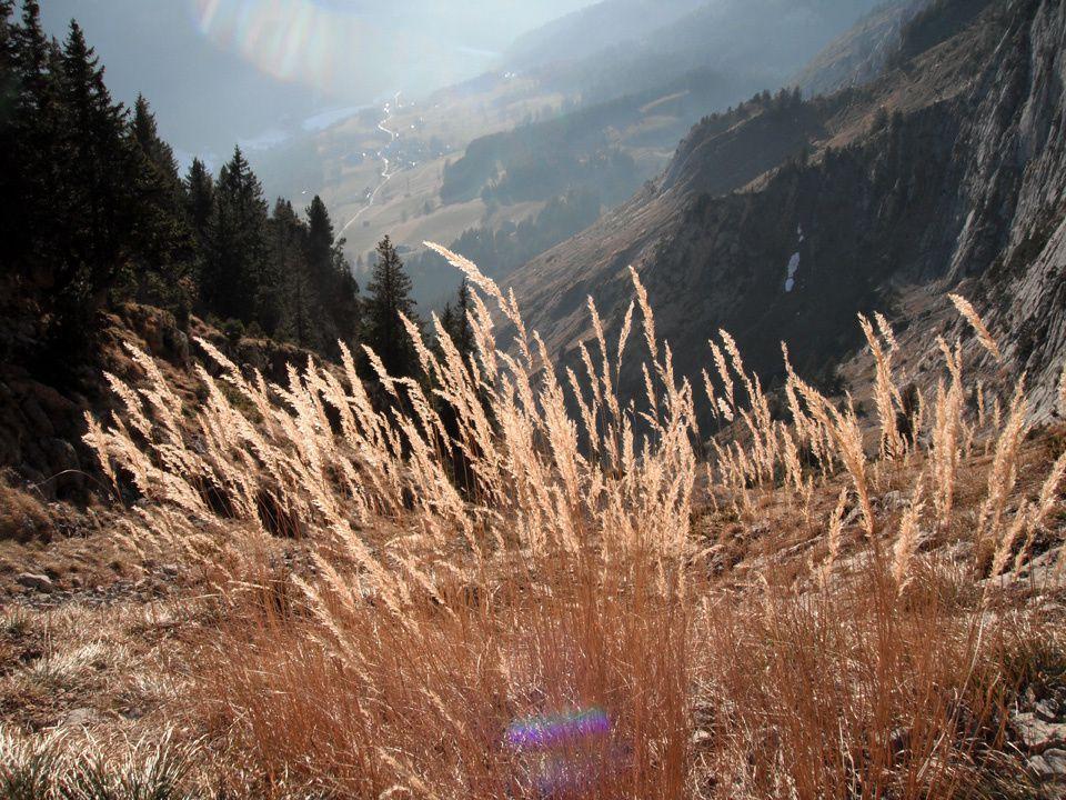 Mont Chauffé - Chablais